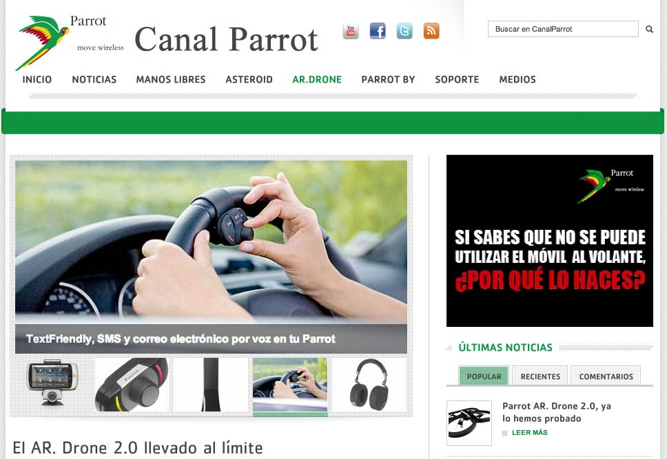 canal_parrot